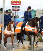 Horse Riders - Counties Mankau