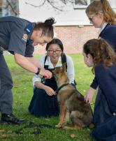 School Kids with Police Puppy - Auckland