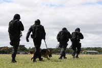 Back-view of four armed offender squad members, and a Police dog walking across a field.