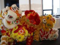 Lion dancers at Police National Headquarters