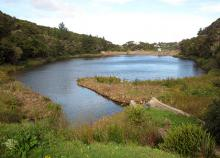 Ross Creek Reservoir near Tuitania Barclay's home in Dunedin.