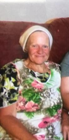 Woman missing near Plimmerton  Liz Loughran