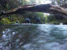 The Dive Squad completed a thorough search of Mangoatawai Stream