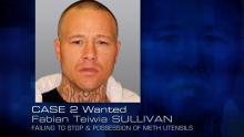 Case 2: Wanted - Fabian Teiwia SULLIVAN