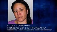 Case 4: Wanted - Natasha Jane STRICKLAND