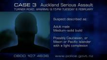 Case 3: Crime of the Week - Ararimu Serious Assault, Auckland