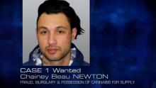 Case 1: Wanted - Chainey Beau NEWTON