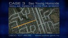 Google map of Insoll Avenue related to Case 3 episode 24