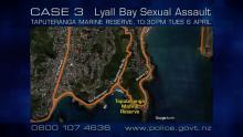 CASE 3: Crime of the Week - Taputeranga Sexual Assault, Wellington