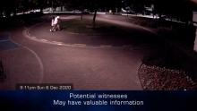 CASE 3: Crime of the Week - Warren Street Serious Assault, Hastings