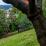 Dunedin SAR exercise 2