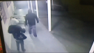 Police are looking to identify these males who attempted a burglary of the Salford Street Dairy on 14 August 2015.