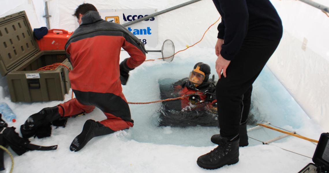 ice emerge