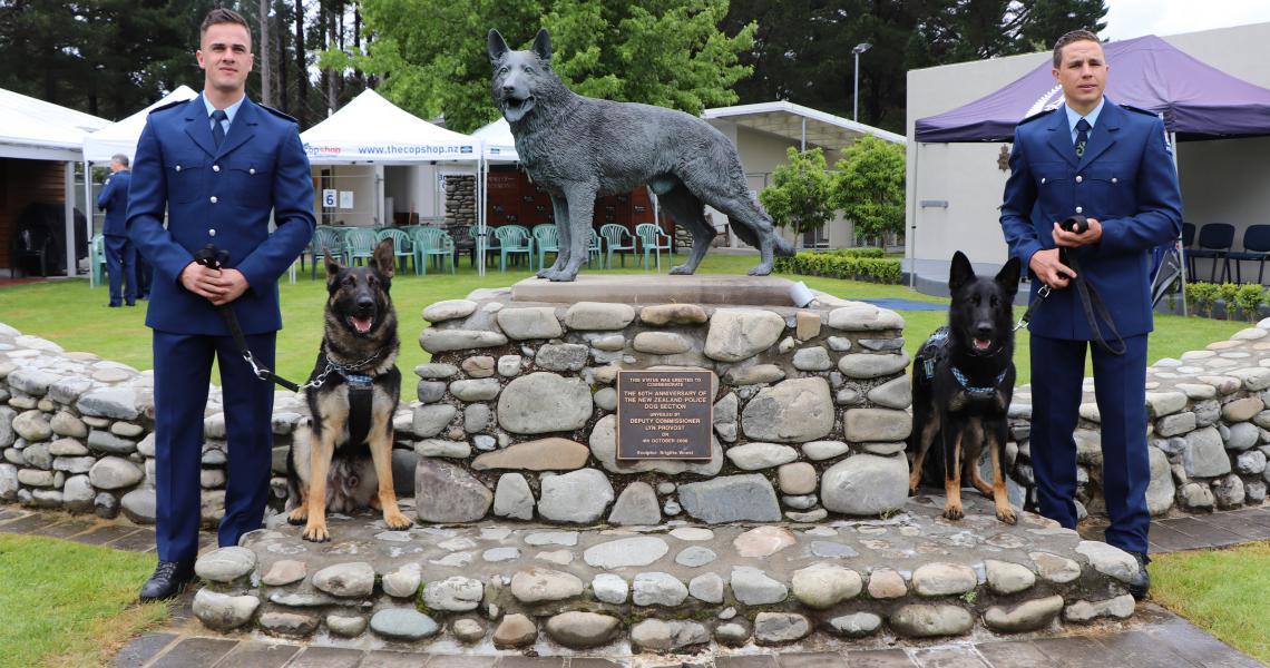 dogs wellington