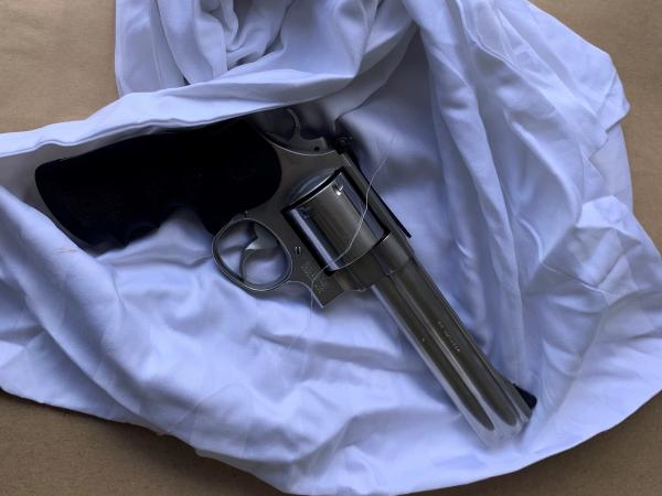 Gun found in Tasman arrest