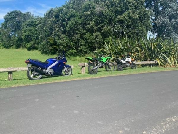 Road bikes and dirt bikes were impounded following an incident at Musick Point