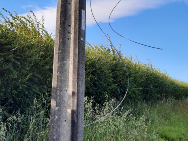 Damaged power pole found in the Manawatū following theft incident
