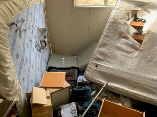 The offenders destroyed furniture inside the homes.