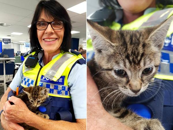 Senior Constable Sherryl Pearce with the rescued kitten.