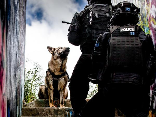 Dakota in the 2021 Police Dog Trust calendar