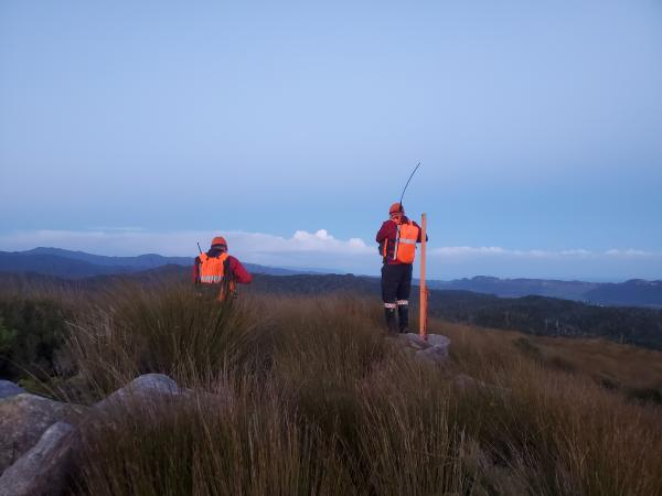 Search and Rescue teams work to locate a lost adventure runner in Nelson Bays.