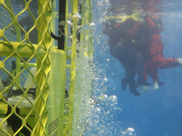 Underwater shot of the Underwater Survivor Trainer