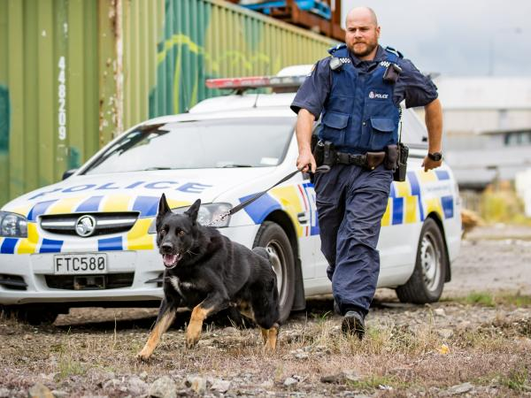 In action: Senior Constable Dave Robison and Ice. Photo: Dog Squad/TVNZ
