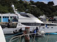 A catamaran restrained in Wellington