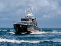 Maritime Wellington - Lady Liz -  1